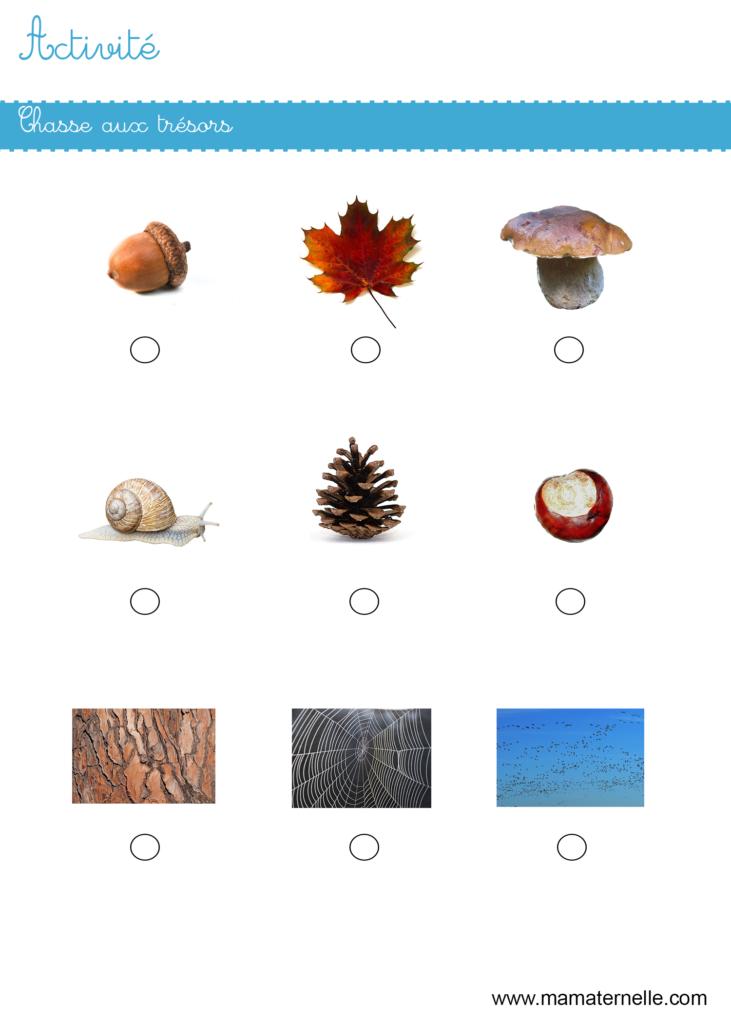 Activités - Activité : chasse aux trésors de l'automne