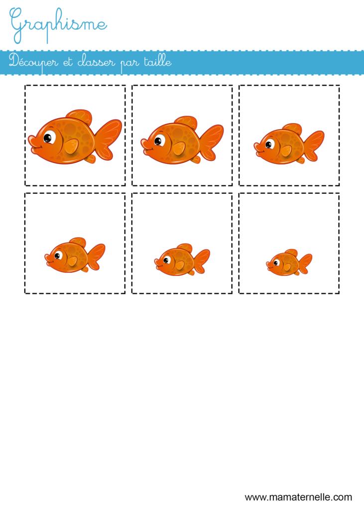 Petite section - Graphisme : découper et classer par taille